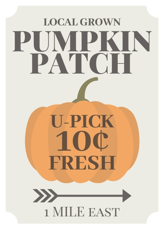 Local Grown Pumpkin Patch U-Pick Pumpkins
