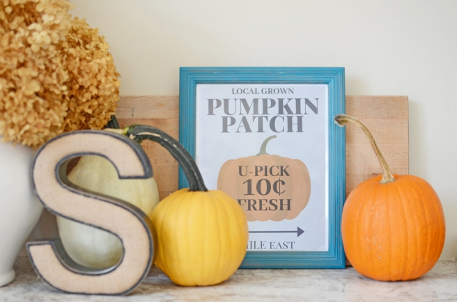 Fall Pumpkin Patch Print